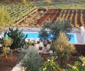 Trullo Bianco - Il Giardino e la piscina